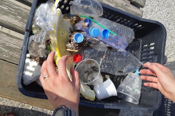Plastic litter box in Heraklion