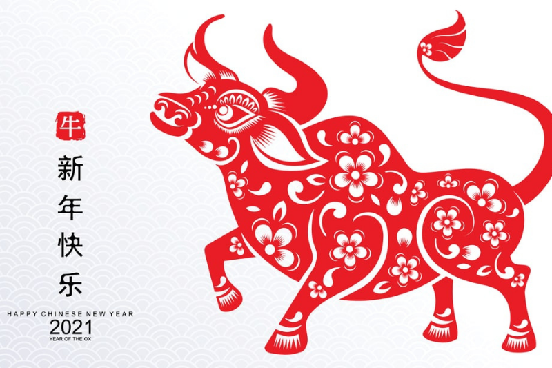 Happy Chinese New Year – year of the Ox