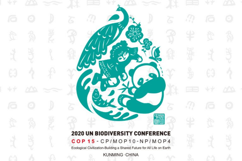 United Nations Biodiversity Conference 2021